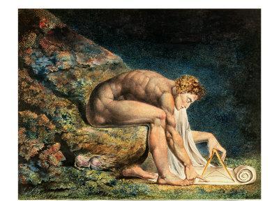Newton - Giclee Print