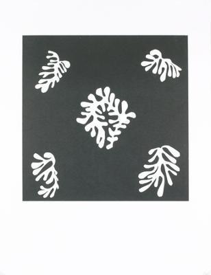 Voile de Calice Noir, 1950 - Art Print