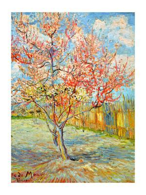 Peach Tree in Bloom at Arles, c.1888 - Giclee Print