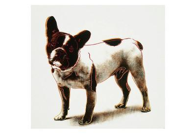 Dog, c.1986 - Art Print