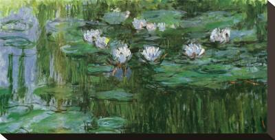 Waterlilies - Stretched Canvas Print