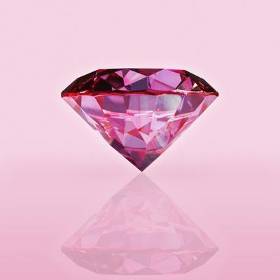 Pink Jewel - Photographic Print