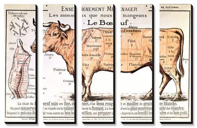 Beef: Diagram Depicting the Different Cuts of Meat - Canvas Art Set