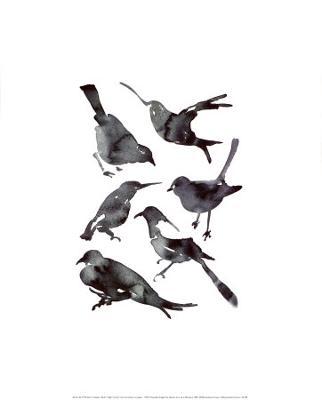 Birds - Art Print