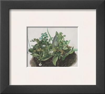 The Small Turf - Framed Art Print