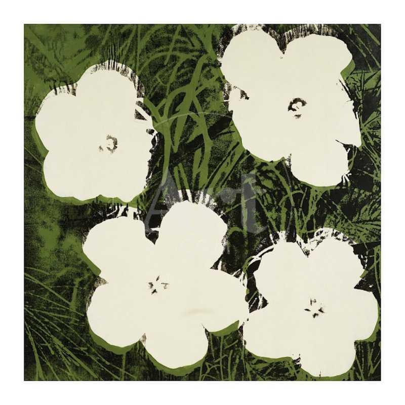 Flowers, c.1964 (White)