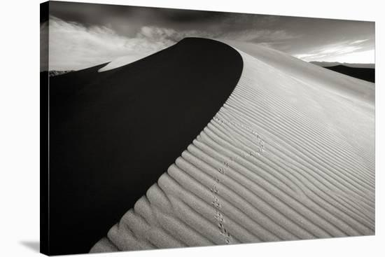 A Moment in Time IV-Hakan Strand-Stretched Canvas Print