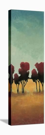 A New Day II-Angelina Emet-Stretched Canvas Print