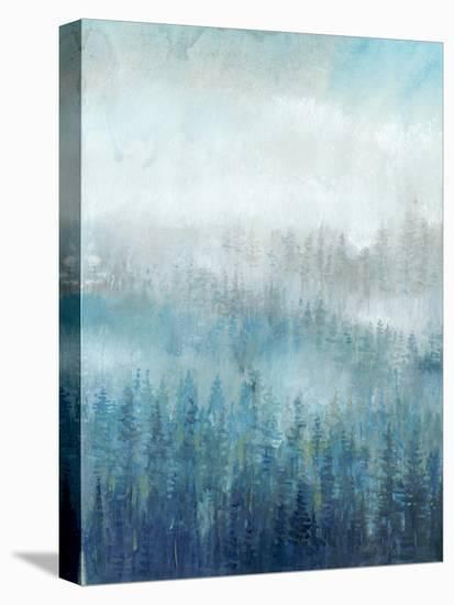 Above the Mist I-Tim O'toole-Stretched Canvas Print