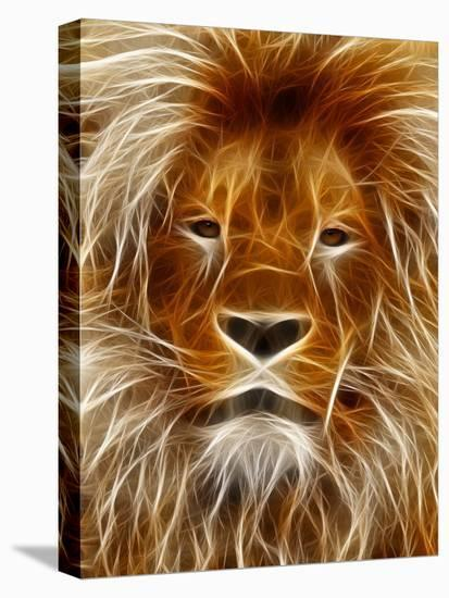 Abstract Lion Cat Animal-Wonderful Dream-Stretched Canvas Print