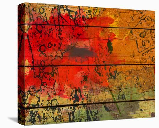 Abstract Red on Wood-Irena Orlov-Stretched Canvas Print