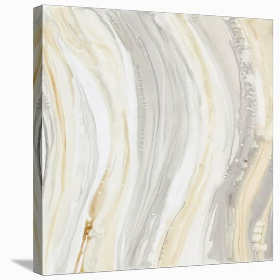 Alabaster I-Debbie Banks-Stretched Canvas Print