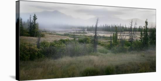 Alaska Highway-Richard Desmarais-Stretched Canvas Print