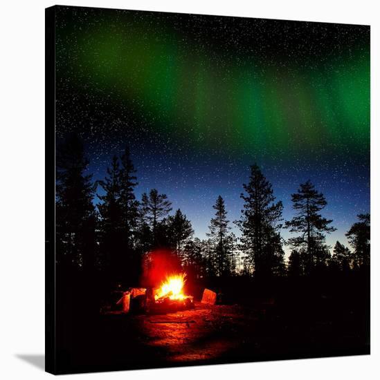 Alaska USA VI--Stretched Canvas Print