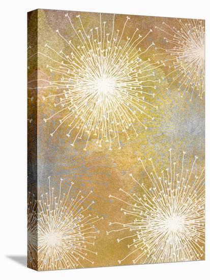 Allium I-Jarman Fagalde-Stretched Canvas Print