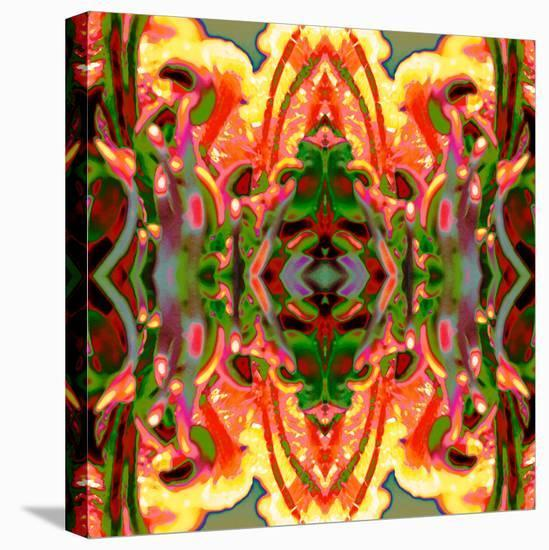 Another Fiesta-Rose Anne Colavito-Stretched Canvas Print