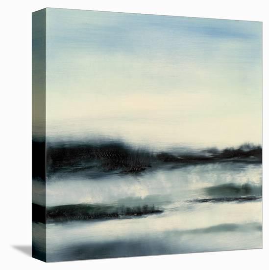 Aqueous Scape-Sharon Gordon-Stretched Canvas Print