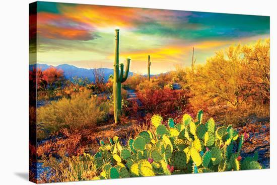 Arizona - Dessert Colors--Stretched Canvas Print