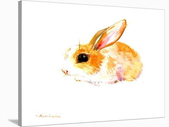 Baby Bunny-Suren Nersisyan-Stretched Canvas Print