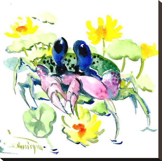 Baby Crab Blue Eyes-Suren Nersisyan-Stretched Canvas Print