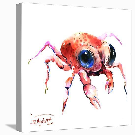 Baby Crab-Suren Nersisyan-Stretched Canvas Print