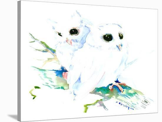 Baby Northern Owls-Suren Nersisyan-Stretched Canvas Print