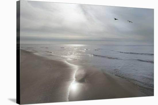 Beach Flight-Monte Nagler-Stretched Canvas Print