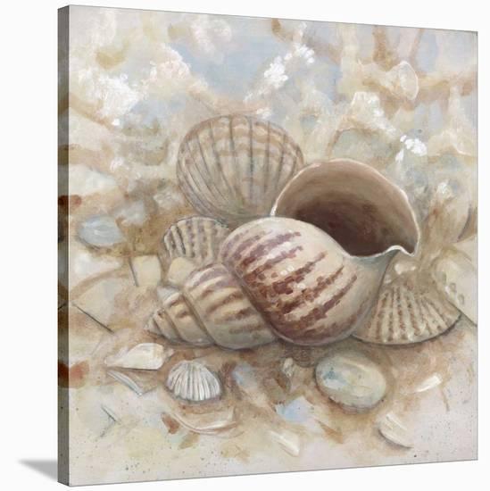 Beach Prize I-Arnie Fisk-Stretched Canvas Print