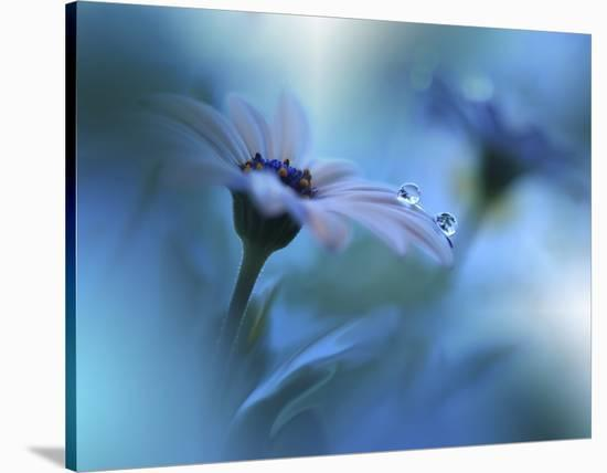 Beyond The Visible-Juliana Nan-Stretched Canvas Print