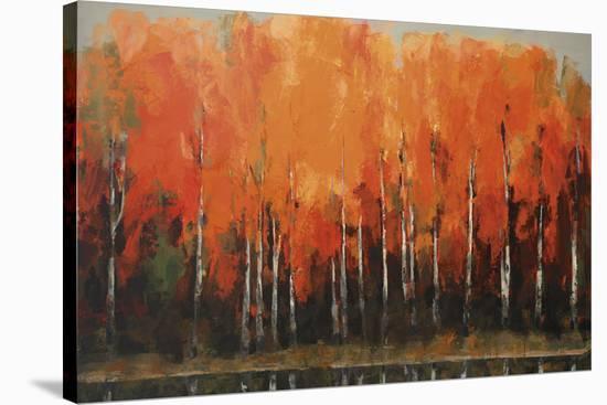 Birch Shoreline-Peter Colbert-Stretched Canvas Print
