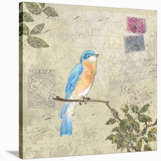 Birds 2-Rick Novak-Stretched Canvas Print