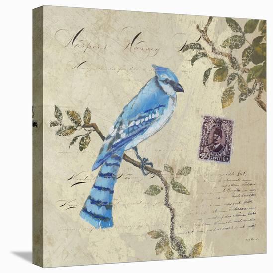 Birds 4-Rick Novak-Stretched Canvas Print