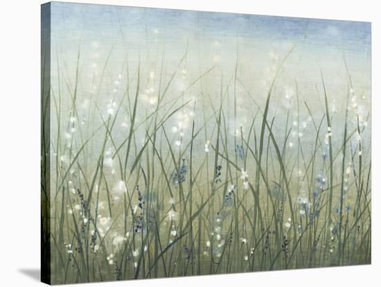 Bliss I-Tim O'toole-Stretched Canvas Print