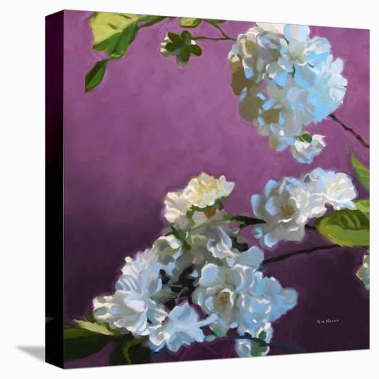 Blossoms 07-Rick Novak-Stretched Canvas Print