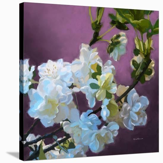 Blossoms 08-Rick Novak-Stretched Canvas Print