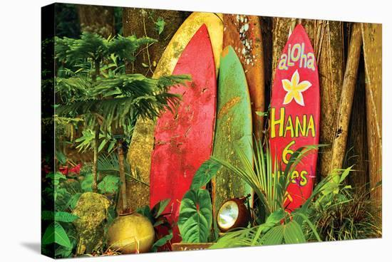 Board in Maui--Stretched Canvas Print