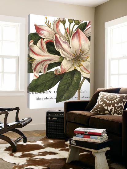 Botanique III--Loft Art