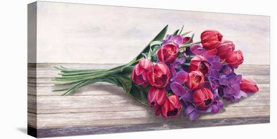 Bouquet-Cristina Mavaracchio-Stretched Canvas Print