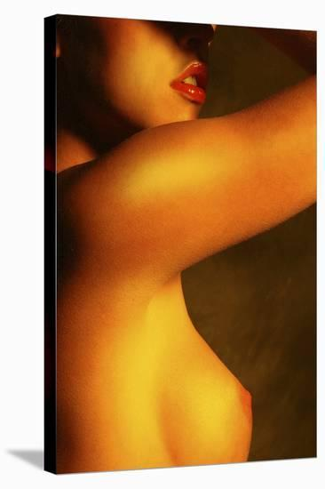 Breast-Richard Desmarais-Stretched Canvas Print