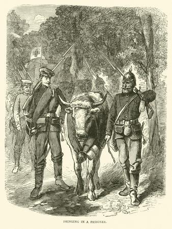 Bringing in a Prisoner, September 1870--Stretched Canvas Print