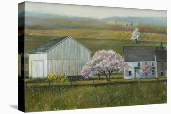 Bucks Co Spring-Jerry Cable-Stretched Canvas Print