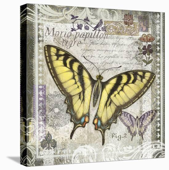 Butterfly Artifact II-Alan Hopfensperger-Stretched Canvas Print