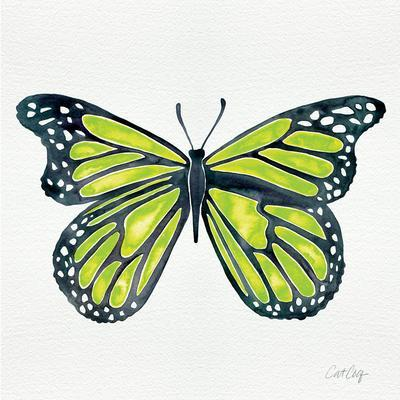Butterfly in Lime-Cat Coquillette-Stretched Canvas Print