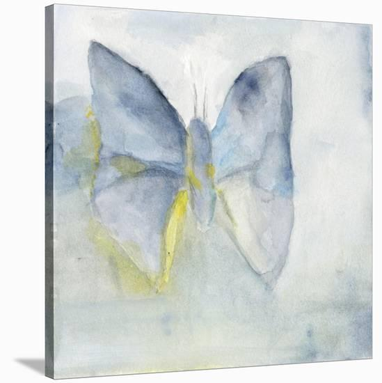 Butterfly V-Michelle Oppenheimer-Stretched Canvas Print