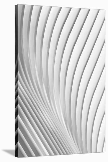 Calatrava Lines-Christopher Budny-Stretched Canvas Print