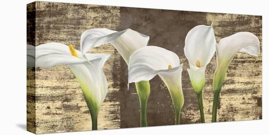 Callas on Gold (mocca variation)-Jenny Thomlinson-Stretched Canvas Print