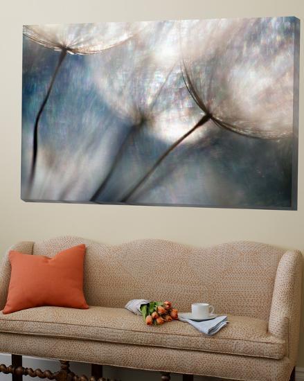 Carefree-Ursula Abresch-Loft Art