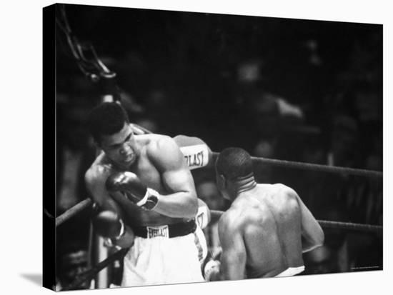 Cassius M. Clay and Sonny Liston During World Championship Fight-Ralph Morse-Premier Image Canvas