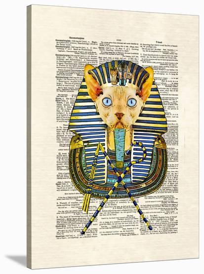 Cat Pharaoh-Matt Dinniman-Stretched Canvas Print