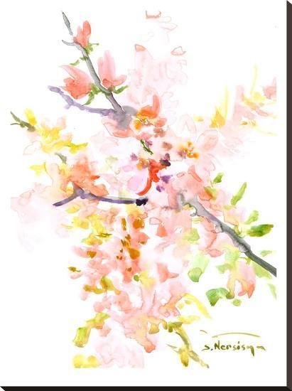 Cherry Blossom Sakura-Suren Nersisyan-Stretched Canvas Print